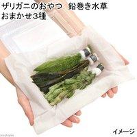 ザリガニのおやつ 鉛巻き水草 おまかせ3種(無農薬)(1セット) ザリガニ