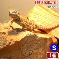 レッドラインストーン S 1個 爬虫類