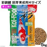 彩錦鯉 胚芽育成用 Mサイズ 5kg 餌 飼料