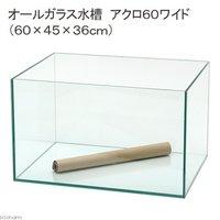 6045水槽(単体)アクロ60Nワイド(60×45×36cm)フタ無し オールガラス水槽 Aqullo