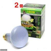 昼用集光型 サングロー バスキング スポットランプ 150W (緑)2個 爬虫類 保温球