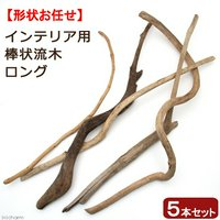 形状おまかせ 棒状流木 ロング 5本セット DIY素材 インテリア用