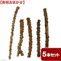 形状おまかせ 山椒の木 細枝 ロング 5本セット DIY素材 インテリア用 レイアウト素材