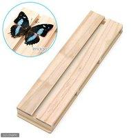 志賀昆虫 36×10cm 2号 展翅板 昆虫 標本用品