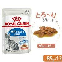 ロイヤルカナン FHN-WET 室内で生活する成猫用 インドア グレービー 85g 1ボール 12袋入り 室内猫 ウェット