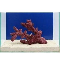 一点物 Real Reef Rock Fancy Branch(Lサイズ) RR-009(1個)
