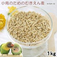 小鳥のためのむきえん麦 1kg 鳥 フード 餌 おやつ 無添加 無着色