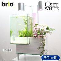 後日生体(熱帯魚) brio35 ホワイト 60Hz 西日本用 Cセット
