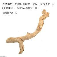 天然素材 形状おまかせ グレープバイン S (長さ300~350mm程度) 爬虫類 小動物