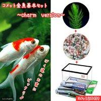 コメット 金魚飼育セット charm version 45cm水槽  説明書付