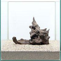 一点物 サンゴウッド 30cm水槽用 892985