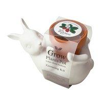 聖新陶芸 Pot Friend ウサギ/ワイルドストロベリー