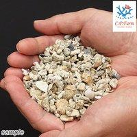 クラッシュコーラルシェルピース 軽洗浄済み 9kg(約8L) サンゴ砂貝殻ミックス(0.45個口相当)別途送料