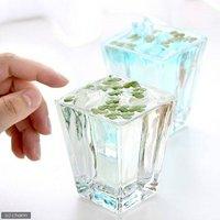 私の小さなアクアリウム ~ウキウキ丸葉ウキクサセット(スクエアS×2ポット)~