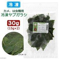 冷凍★冷凍国産ヤブガラシ 30g 別途クール手数料