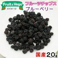国産 ブルーベリー 20g 犬用おやつ 無添加 無着色 PackunxCOCOA fruit&vege フルーツチップス