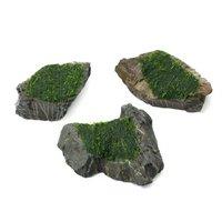 巻きたて ウィローモス 風山石 Sサイズ(約10cm)(無農薬)(3個)
