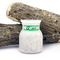 菌糸ビン G-pot 550cc 1本