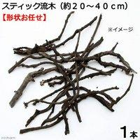 形状お任せ 煮込み済み スティック流木(約20~40cm) 1本