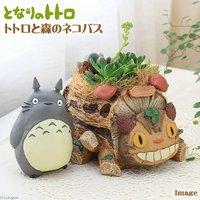 ジブリプランター 多肉寄せ植え となりのトトロ トトロと森のネコバス(植え込み完成品)(1鉢) 北海道冬季発送不可