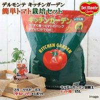 私の菜園 デルモンテ キッチンガーデン 簡単トマト栽培セット(フルーツルビーEX) 家庭菜園