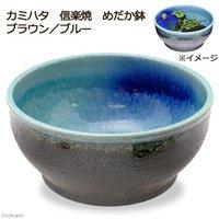 カミハタ 信楽焼 めだか鉢 ブラウン/ブルー