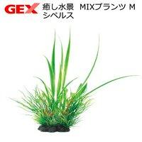 GEX 癒し水景 MIXプランツ M シペルス