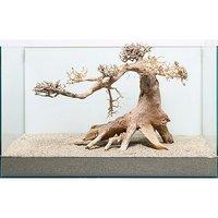一点物 盆栽流木 ノーマルタイプ 862170