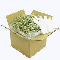 おまかせチモシー + ビニール手袋付き(段ボール箱)1kg 牧草 うさぎ 小動物