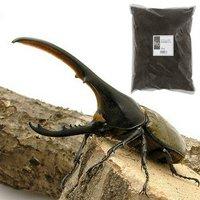 ヘラクレスヘラクレス幼虫(1匹) + XLマット カブト用 10リットル(説明書付)