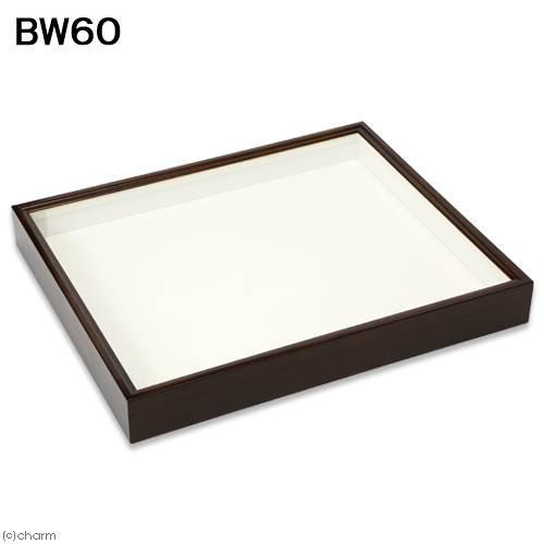 バードウィング製 ドイツ型標本箱 BW60(幅50.7×奥行き41.8×高さ6cm) 昆虫 標本用品 沖縄別途送料