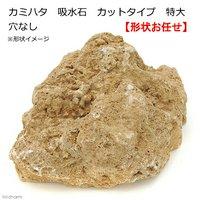 アウトレット品 カミハタ 吸水石 カットタイプ 特大 穴なし テラリウム パルダリウム 着生 コケ 訳あり