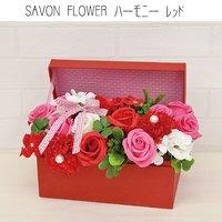 SAVON FLOWER ハーモニー レッド