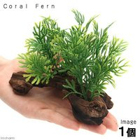 アーティフィシャルプランツ(人工水草)流木付 Coral Fern(1個)