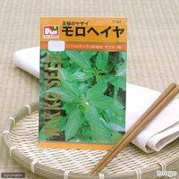 野菜の種 モロヘイヤ 品番:1164 家庭菜園