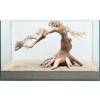 一点物 盆栽流木 ノーマルタイプ 862178