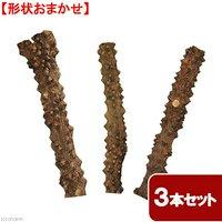 形状おまかせ 山椒の木 太枝 ロング 3本セット DIY素材 インテリア用 レイアウト素材