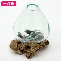 一点物 ラウンドガラス 流木スタンド付(239487)コケ テラリウム ガラス インテリア 瓶