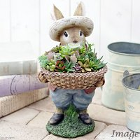 私のオアシス 多肉寄せ植え 動物達の贈り物 ウサギのパトリック(1鉢) 説明書付き