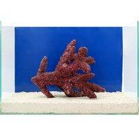 一点物 Real Reef Rock Fancy Branch(Lサイズ) RR-033(1個)