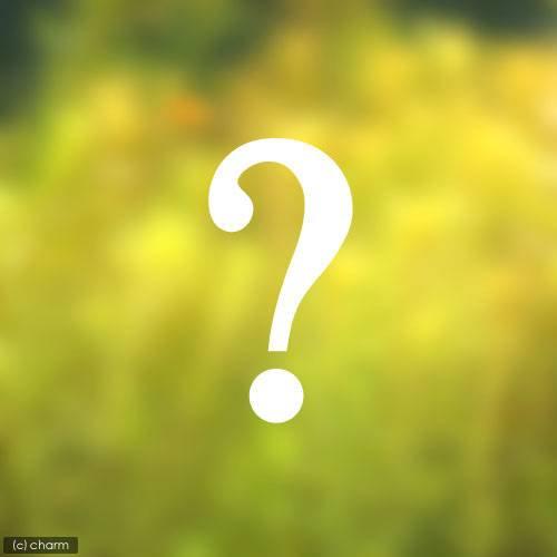 (水草)おまかせ後景草(水上葉) 3種×5本セット(無農薬)(計15本) 熱帯魚 北海道航空便要保温
