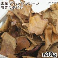 国産アンブレラリーフ ちぎりタイプ 約30g マジックリーフ(アピスト ベタ ビーシュリンプ)