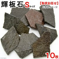 形状お任せ 輝板石 Sサイズ 10枚 国産品