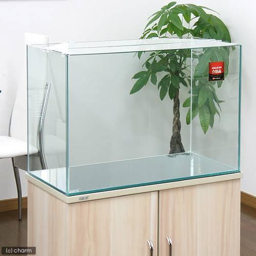 GEX お一人様1点限り グラステリア600水槽 (60×30×40) 60cm水槽(単体) ジェックス