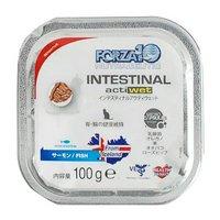 FORZA10(フォルツァ10) アクティウェット インテスティナル 胃腸ケア 100g キャット