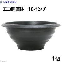 ソネケミファ エコ睡蓮鉢 18インチ