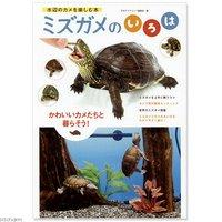 ミズガメのいろは 書籍 水棲ガメ