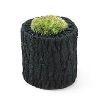 苔盆栽 炭鉢植え ヤマゴケ Sサイズ(1鉢)