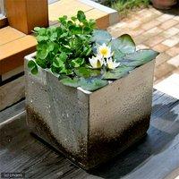 国産 手作り睡蓮鉢 益子焼 彩(SAI) 角 古信楽 直径18cm ビオトープ