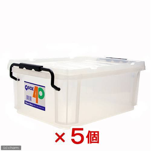 QBOX−40(385×265×150mm)5個 クワガタ カブトムシ 飼育ケース コンテナ ボックス 飼育 ブリード